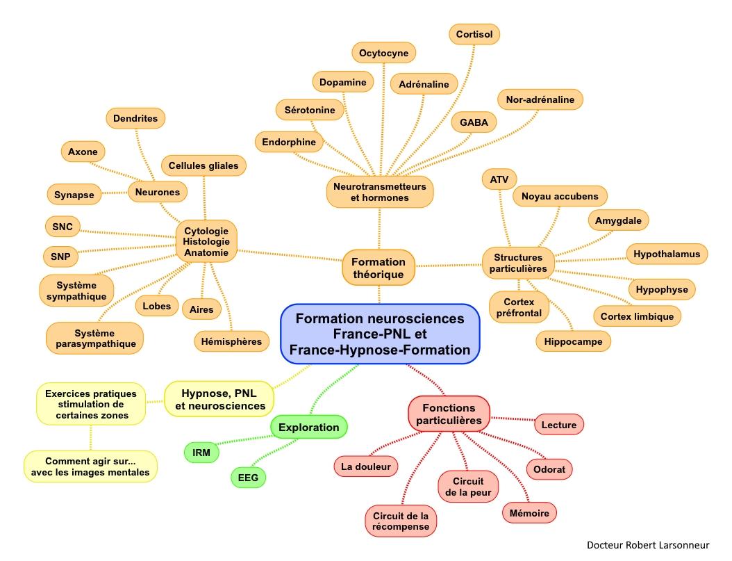 Formation-neurosciences-map-mind-1