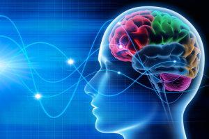 france-pnl hypnose formation neurosciences