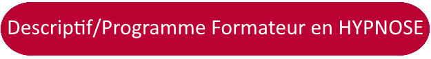 formation formateur : description et programme