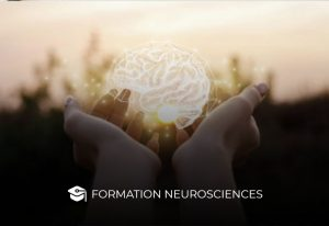 Formation neurosciences
